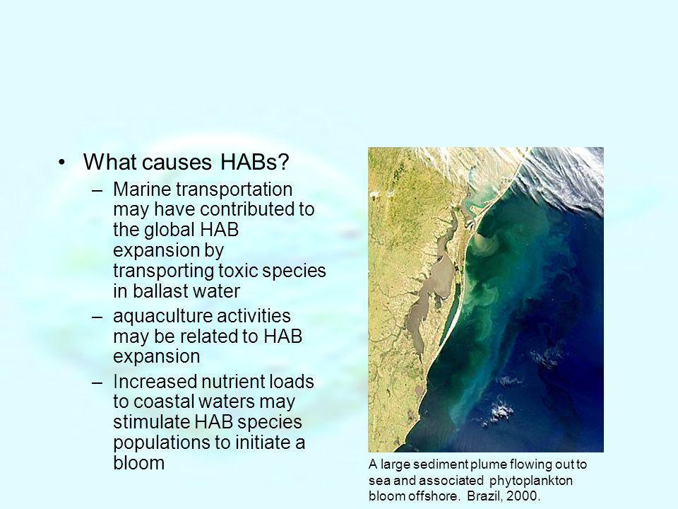 What causes HABs Marine transportation may have contributed to the global HAB expansion by transporting toxic species in ballast water.