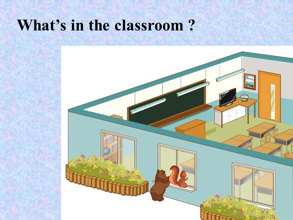What's in the classroom