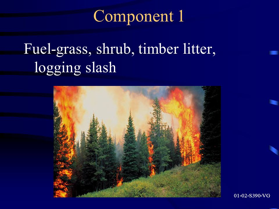 Component 1 Fuel-grass, shrub, timber litter, logging slash