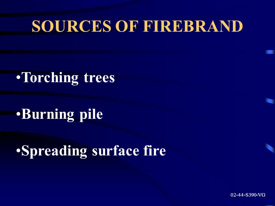 SOURCES OF FIREBRAND Torching trees Burning pile