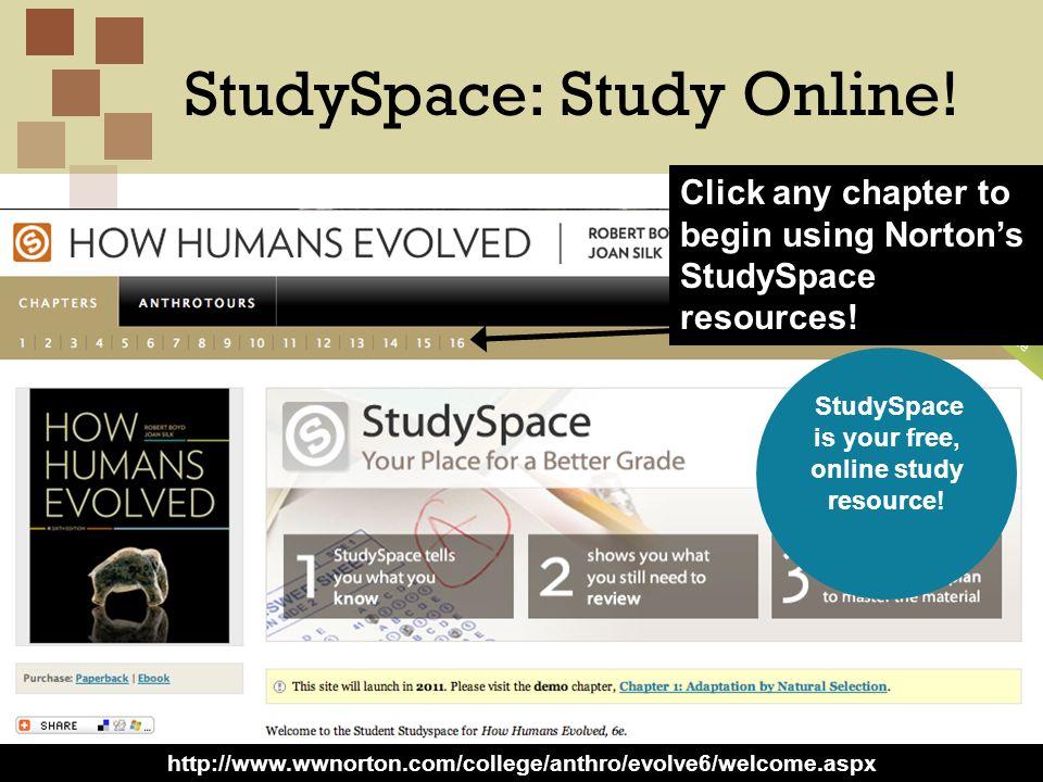 StudySpace: Study Online!