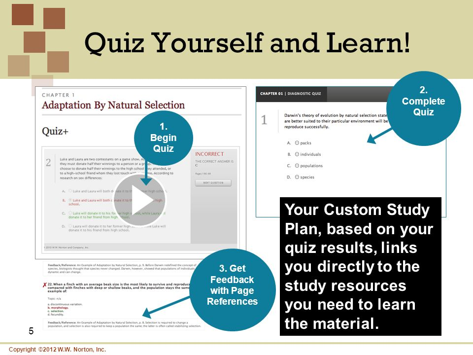 Quiz Yourself and Learn!