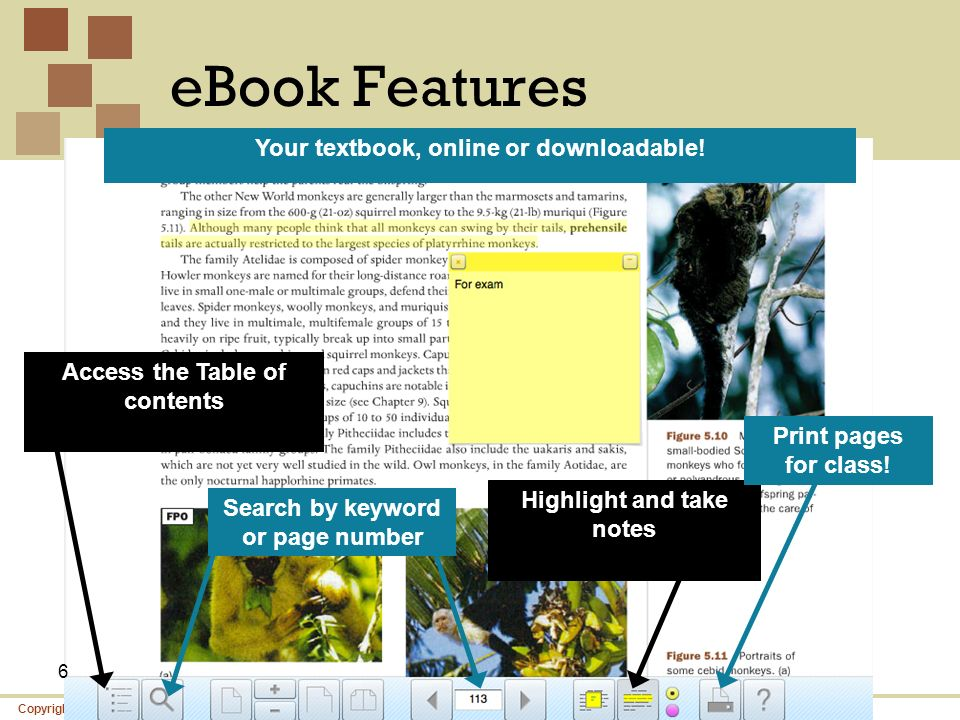 eBook Features Your textbook, online or downloadable!