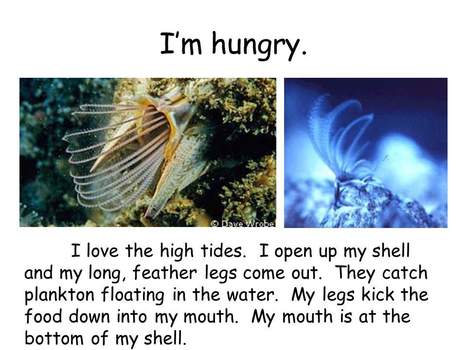 I'm hungry.