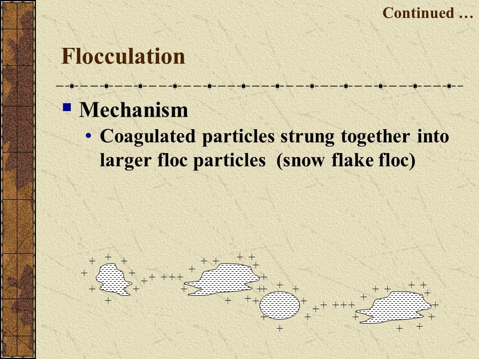 Flocculation Mechanism