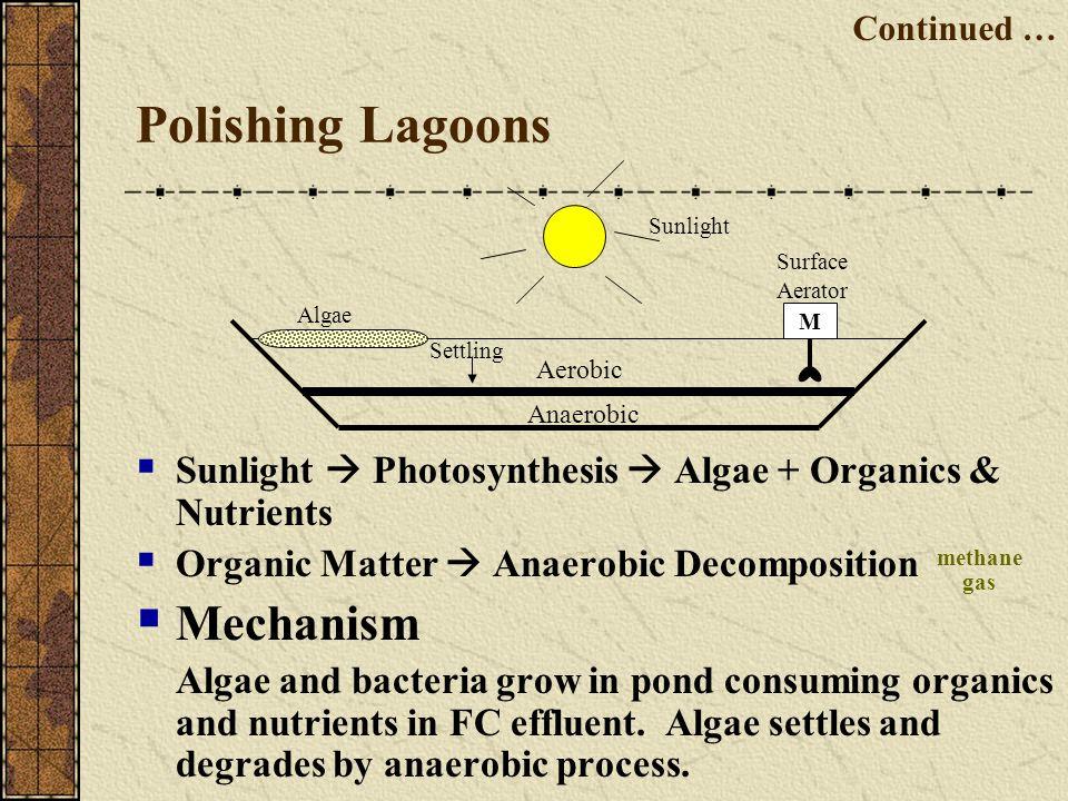 Polishing Lagoons Mechanism