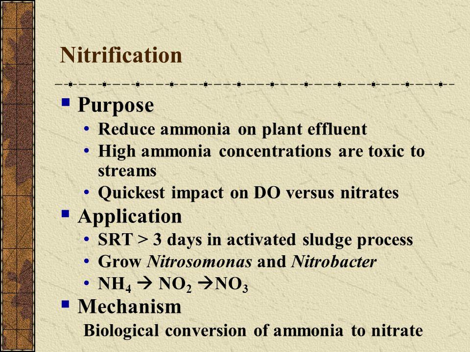 how to grow nitrosomonas and nitrobacter in activated sludge