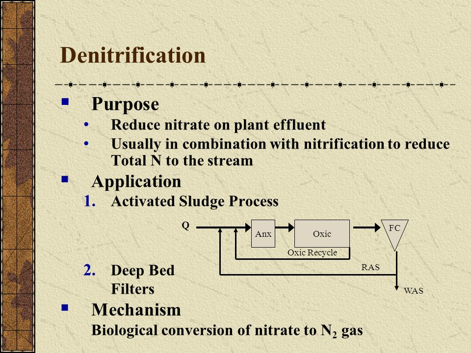 Denitrification Purpose Application Mechanism