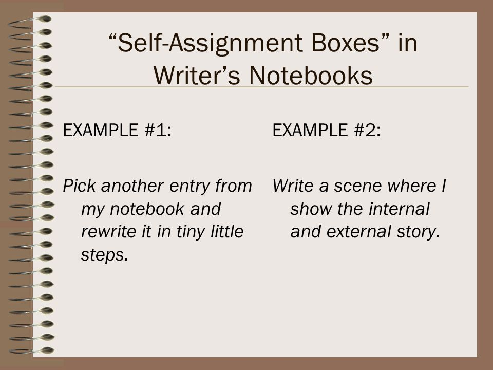 Self-Assignment Boxes in Writer's Notebooks