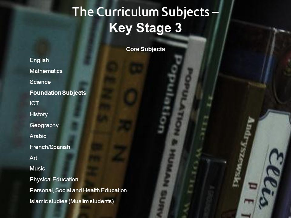 The Curriculum Subjects –