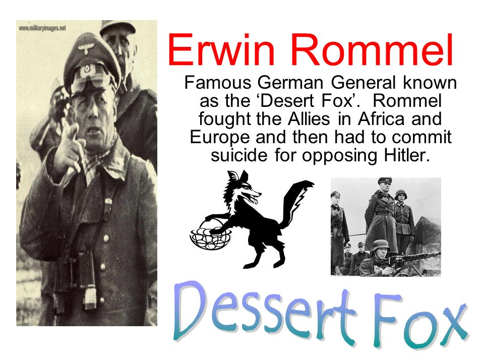 Erwin Rommel Dessert Fox