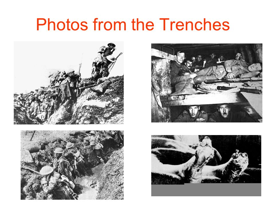Photos from the Trenches