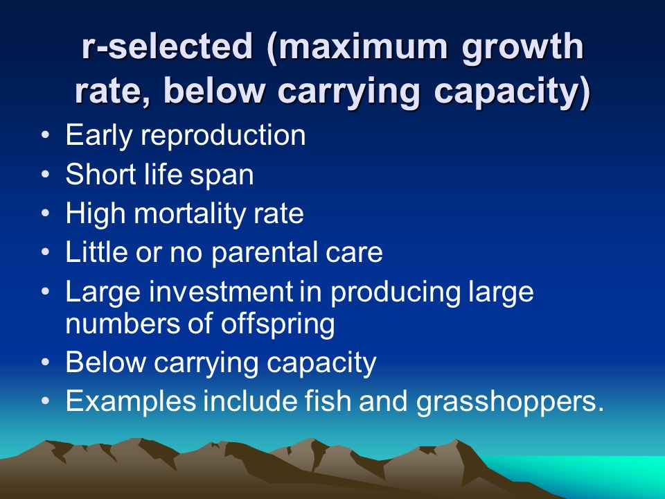 r-selected (maximum growth rate, below carrying capacity)