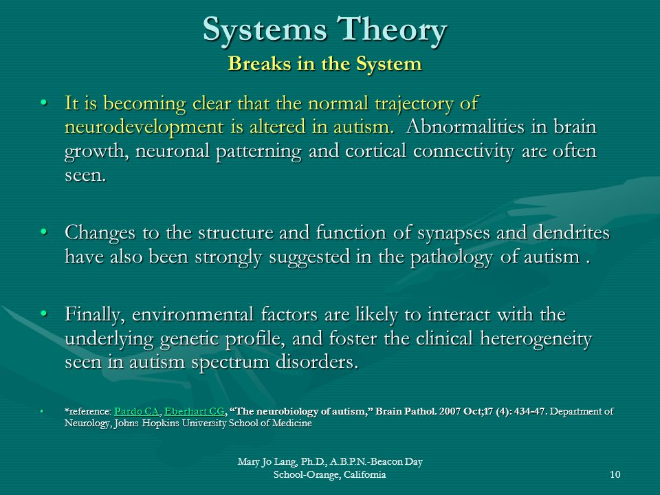 Systems Theory Breaks in the System
