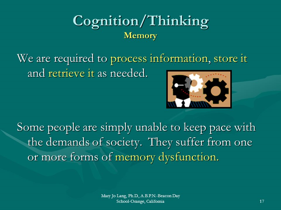 Cognition/Thinking Memory