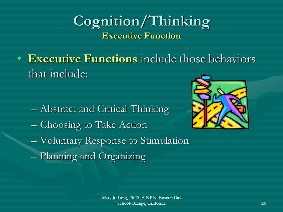 Cognition/Thinking Executive Function