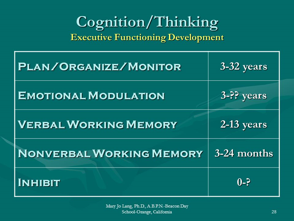 Cognition/Thinking Executive Functioning Development