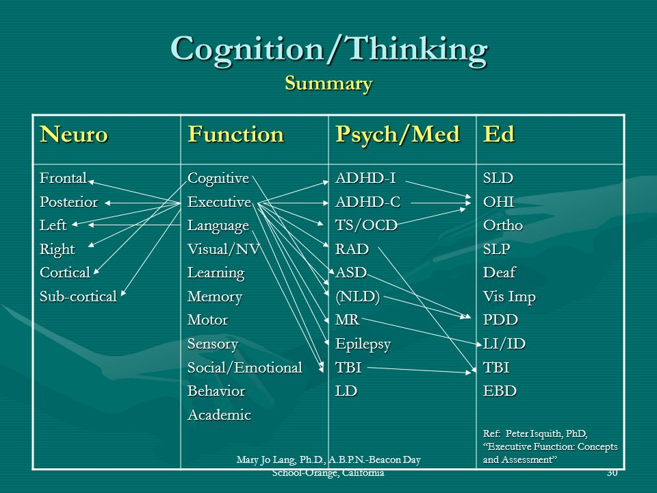 Cognition/Thinking Summary