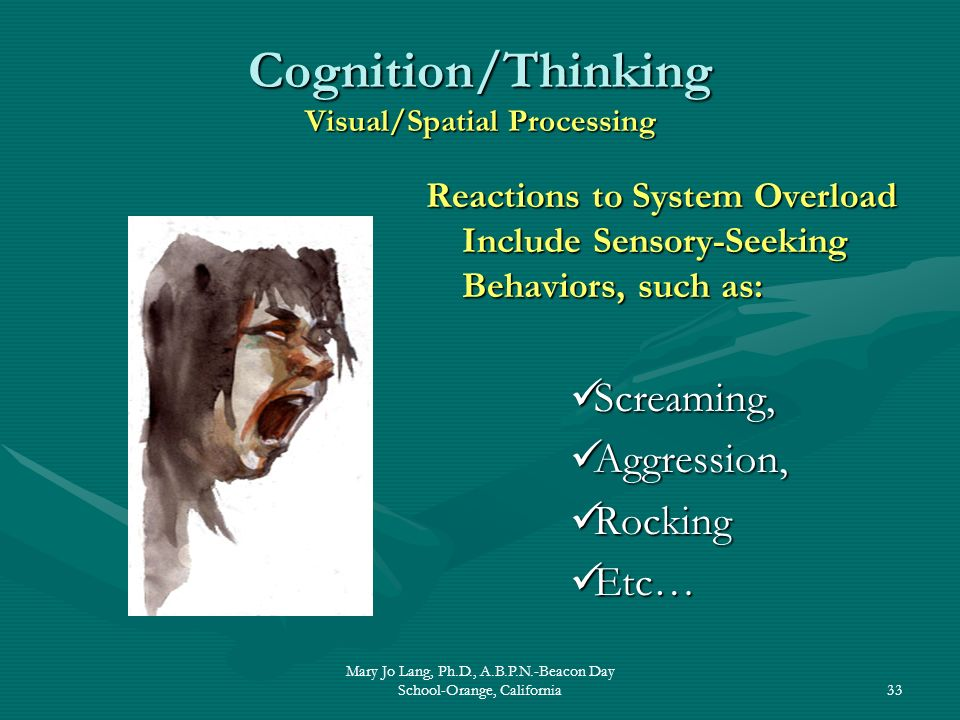 Cognition/Thinking Visual/Spatial Processing