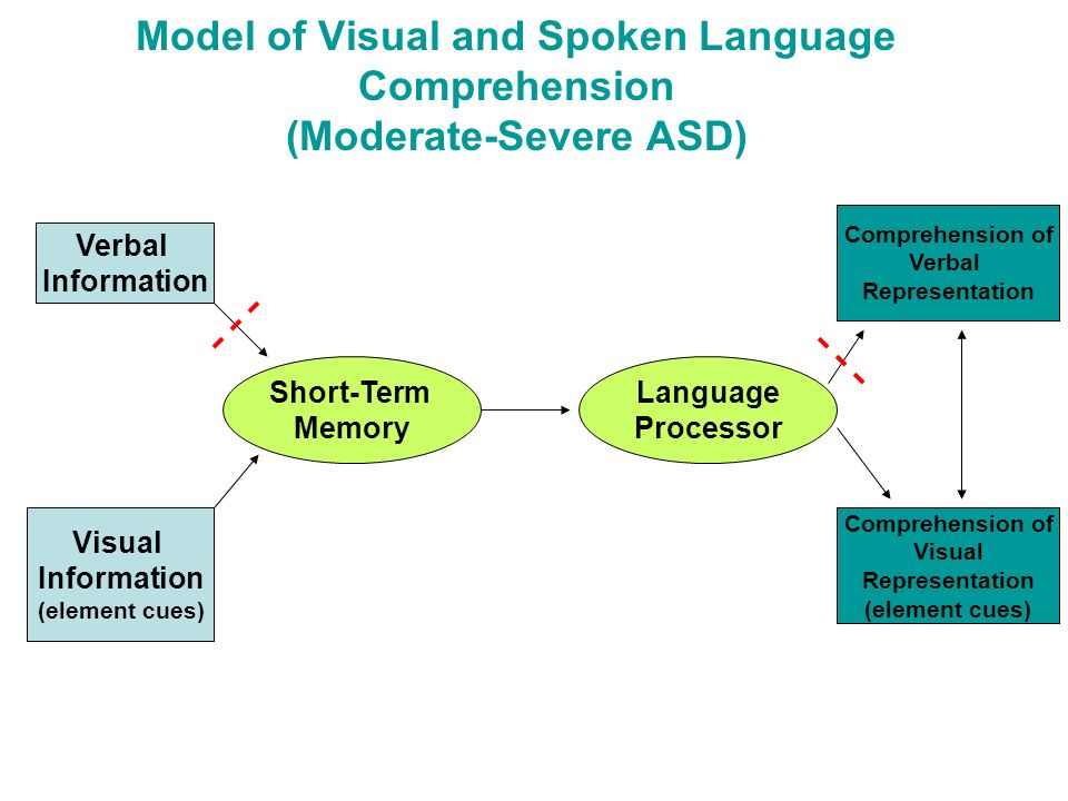 Model of Visual and Spoken Language Comprehension (Moderate-Severe ASD)