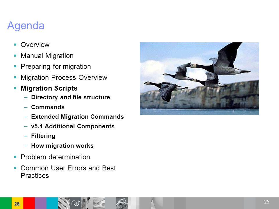 Agenda Overview Manual Migration Preparing for migration