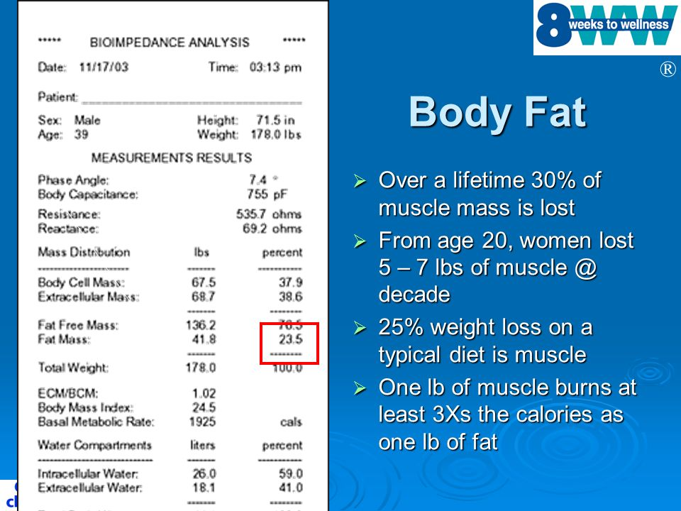 Body Fat Over a lifetime 30% of muscle mass is lost