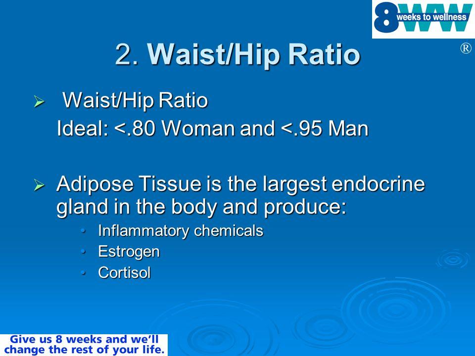 2. Waist/Hip Ratio Waist/Hip Ratio