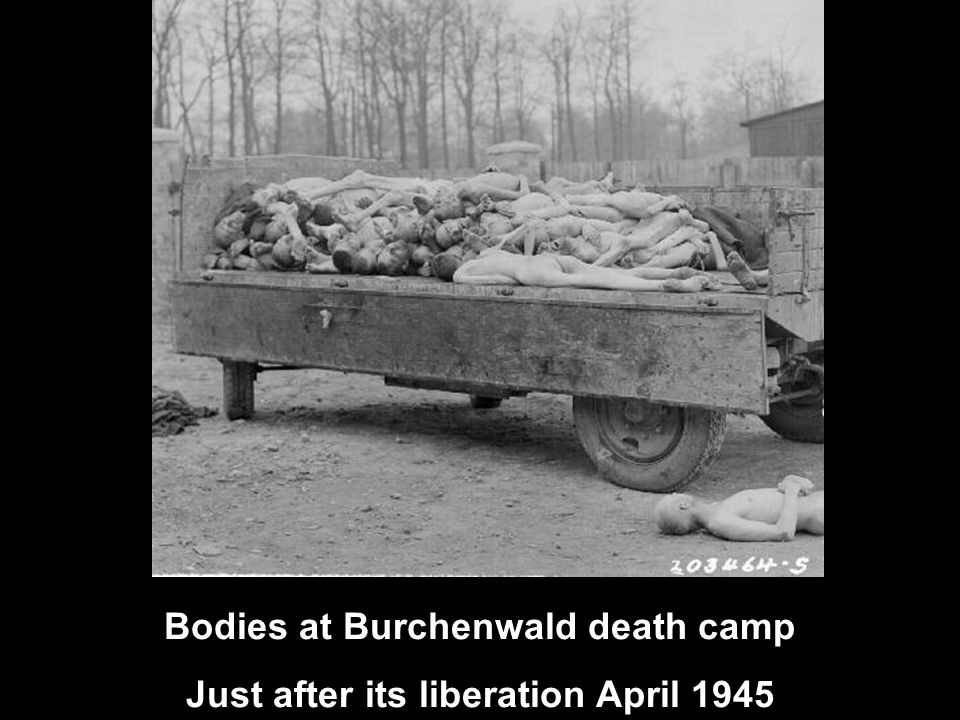Bodies at Burchenwald death camp Just after its liberation April 1945