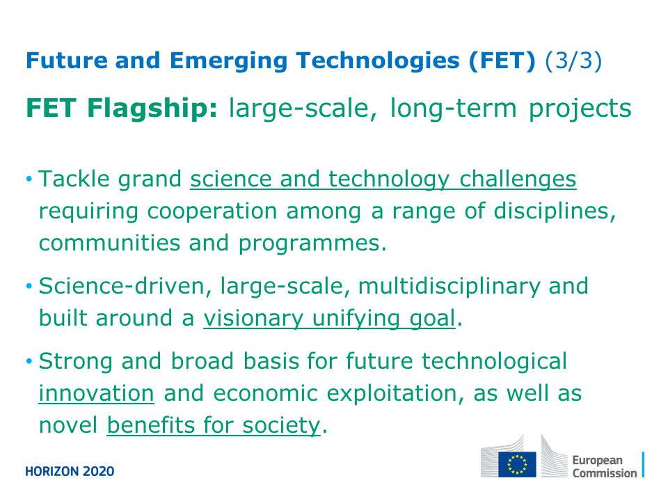 FET Flagship: large-scale, long-term projects