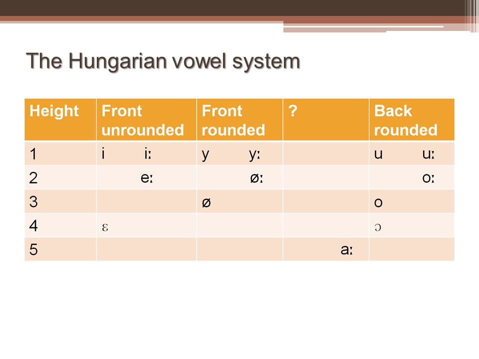 The Hungarian vowel system