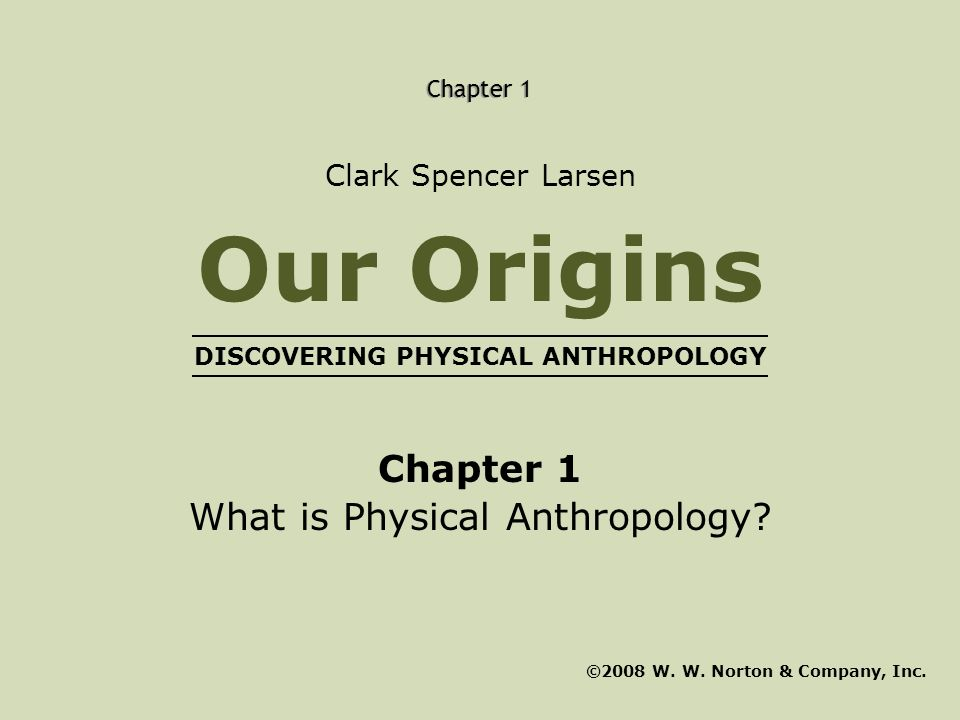 DISCOVERING PHYSICAL ANTHROPOLOGY