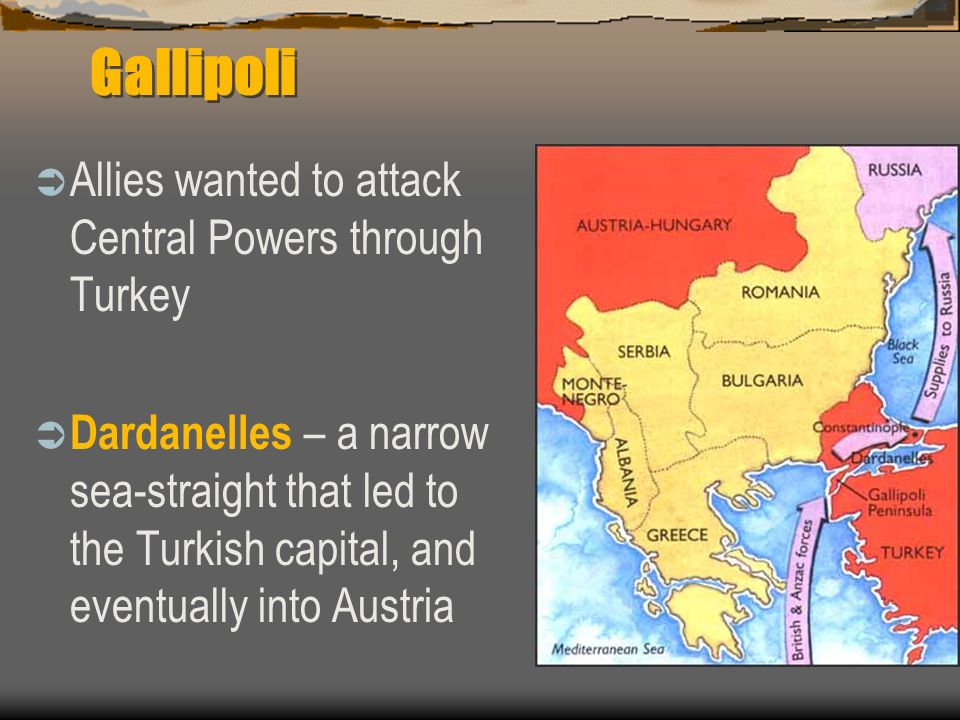 Gallipoli Allies wanted to attack Central Powers through Turkey