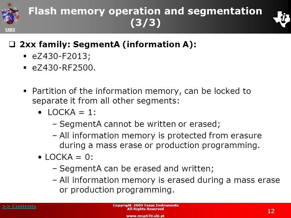 Flash memory operation and segmentation (3/3)