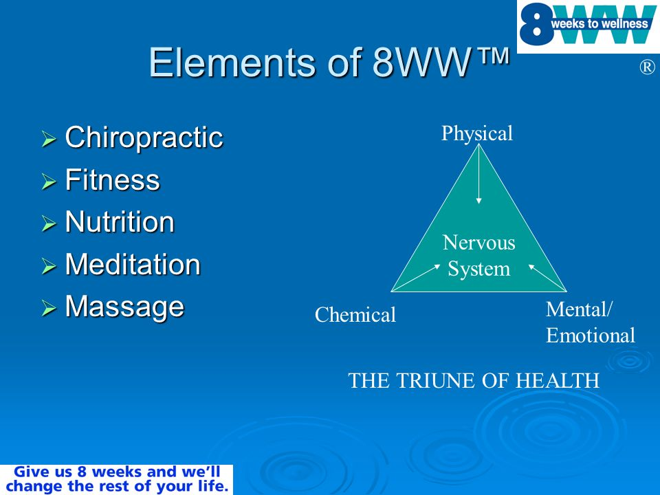 Elements of 8WW™ Chiropractic Fitness Nutrition Meditation Massage