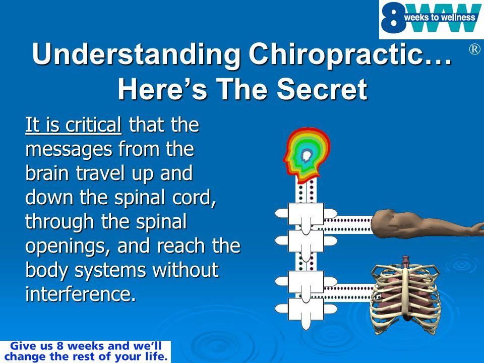 Understanding Chiropractic… Here's The Secret