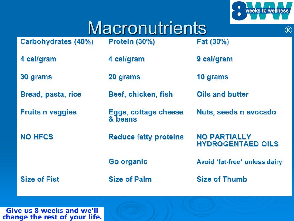 Macronutrients Carbohydrates (40%) Protein (30%) Fat (30%)