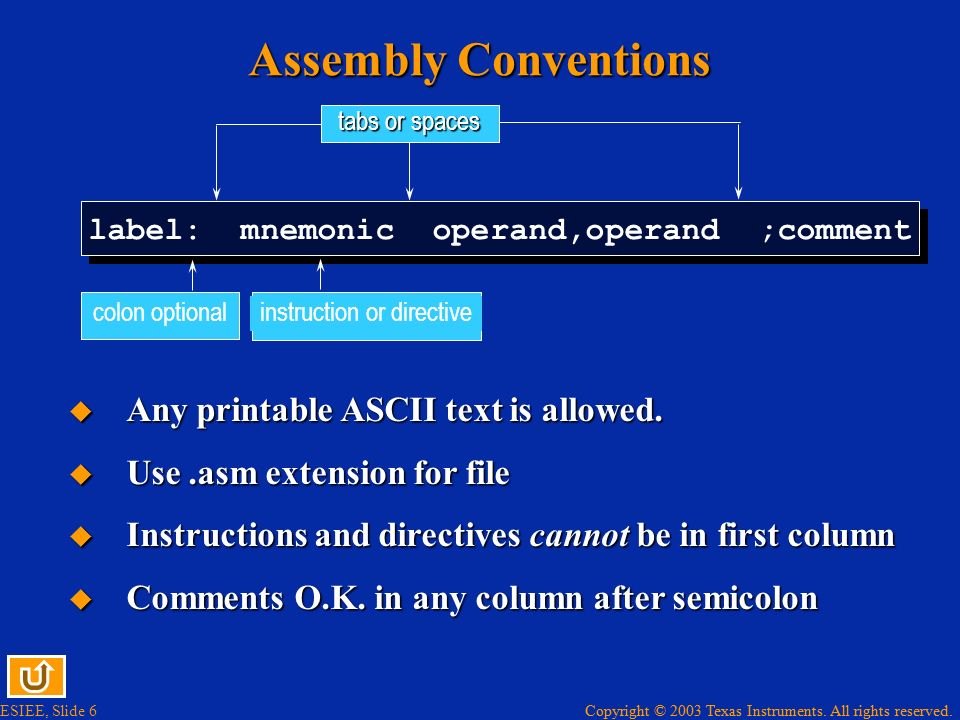 Assembly Conventions Any printable ASCII text is allowed.