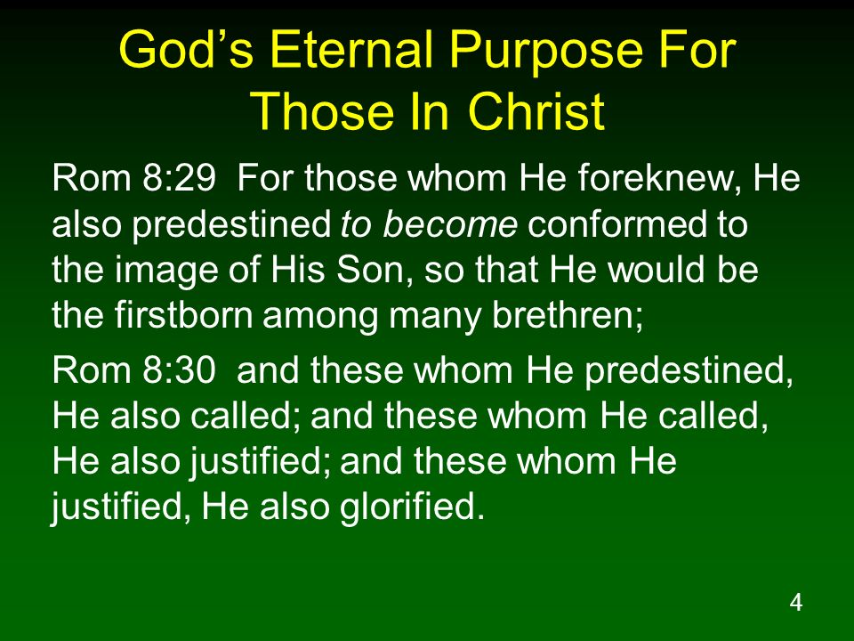 God's Eternal Purpose For Those In Christ