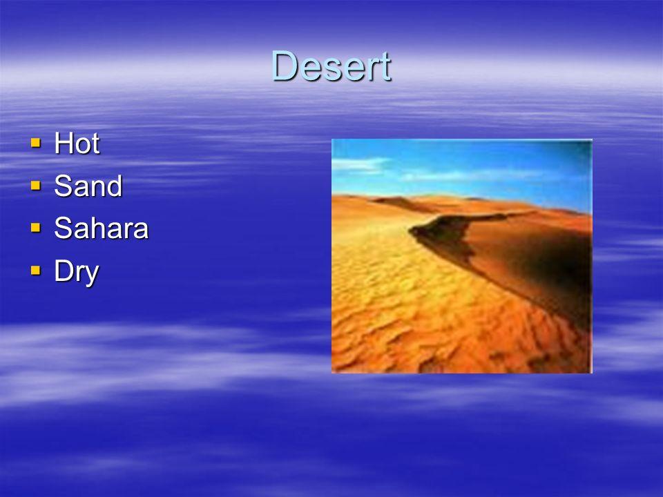 Desert Hot Sand Sahara Dry