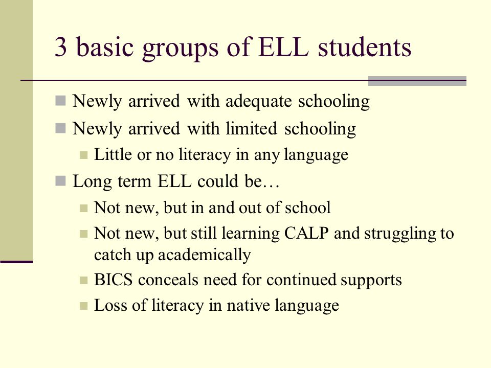 3 basic groups of ELL students