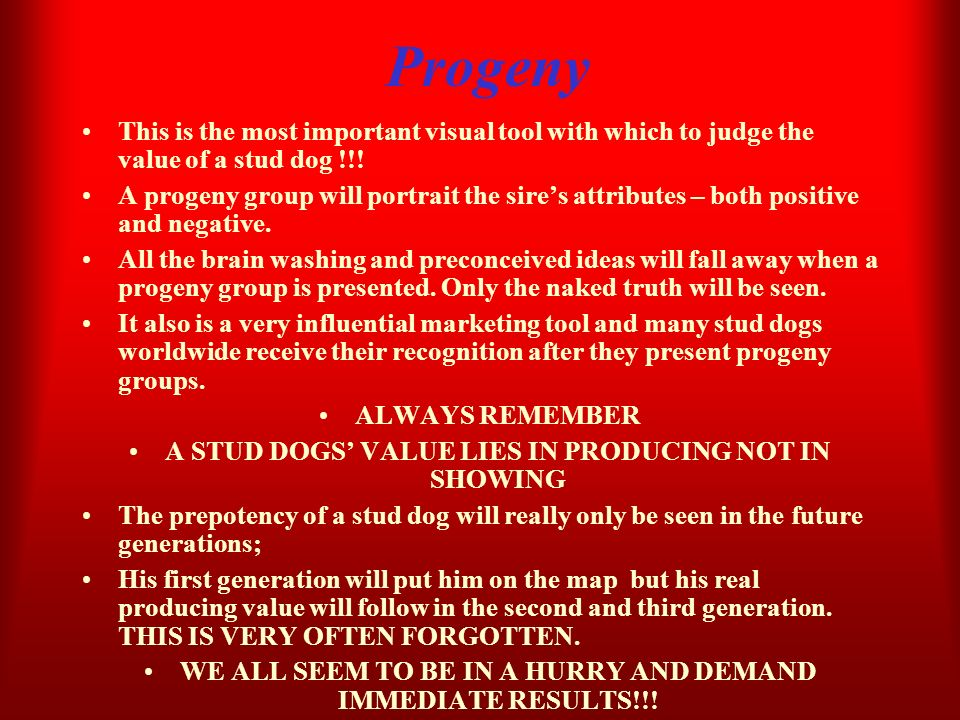 ProgenyThis is the most important visual tool with which to judge the value of a stud dog !!!
