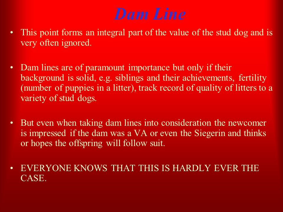 Dam LineThis point forms an integral part of the value of the stud dog and is very often ignored.
