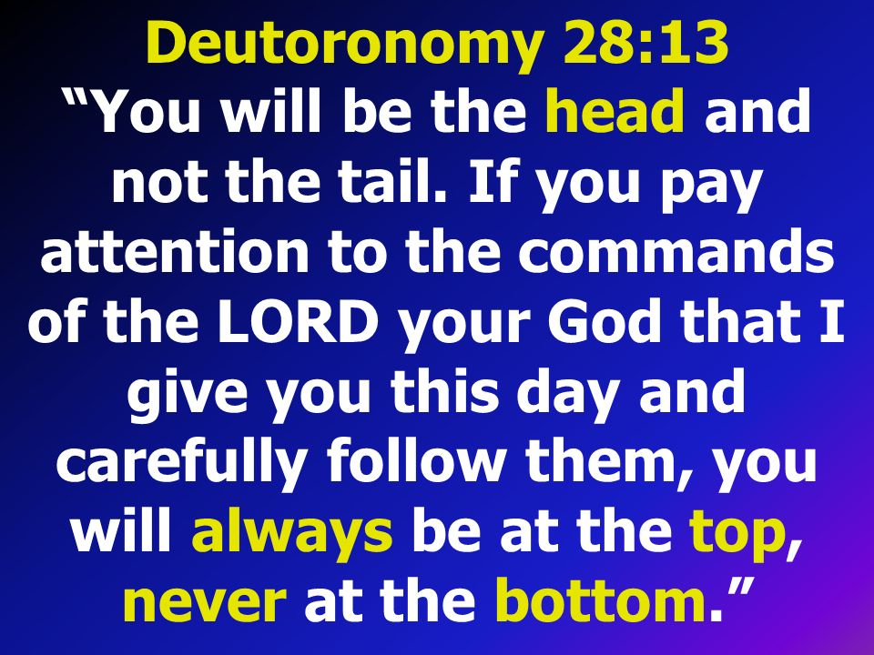 Deutoronomy 28:13 You will be the head and not the tail