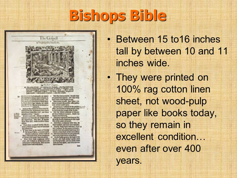 Bishops Bible Between 15 to16 inches tall by between 10 and 11 inches wide.