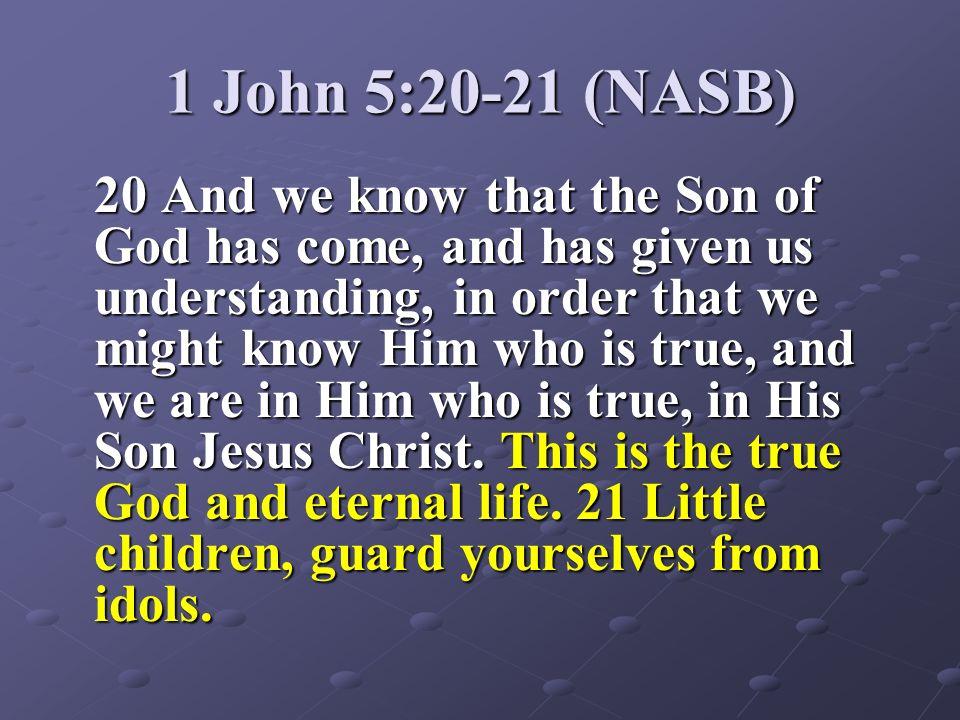 1 John 5:20-21 (NASB)