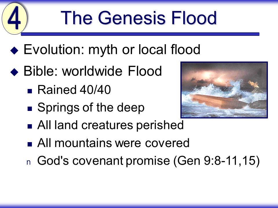 The Genesis Flood 4 Evolution: myth or local flood