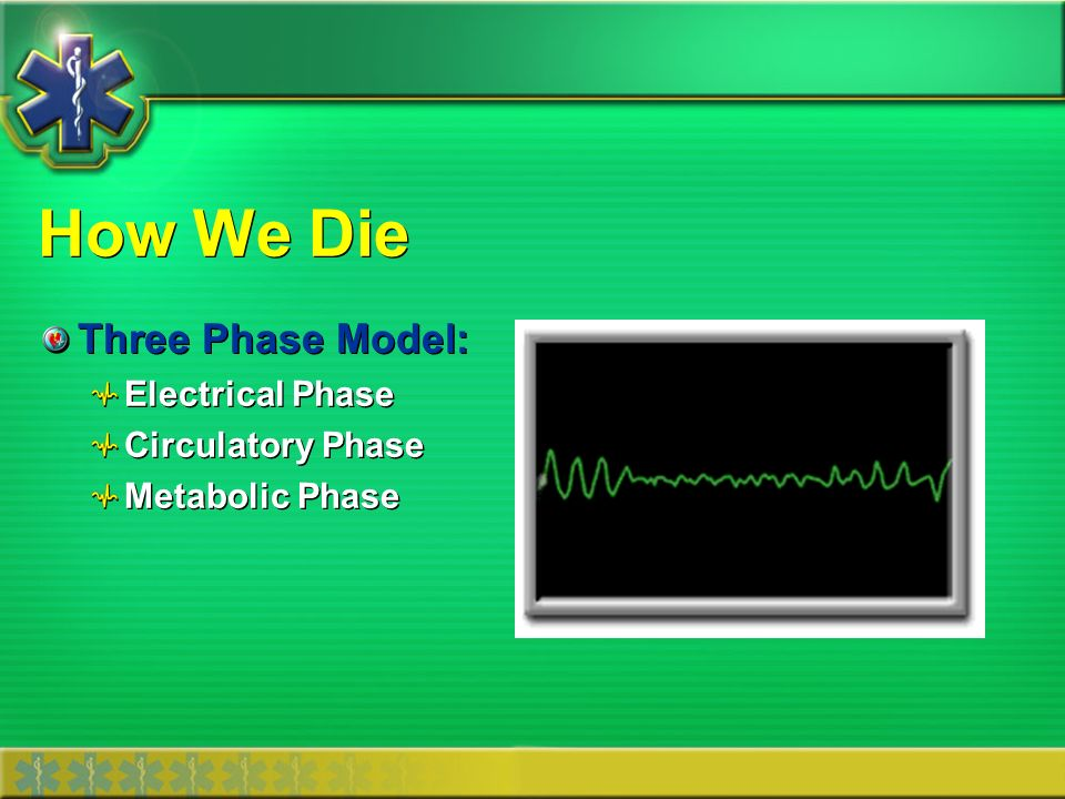 How We Die Three Phase Model: Electrical Phase Circulatory Phase