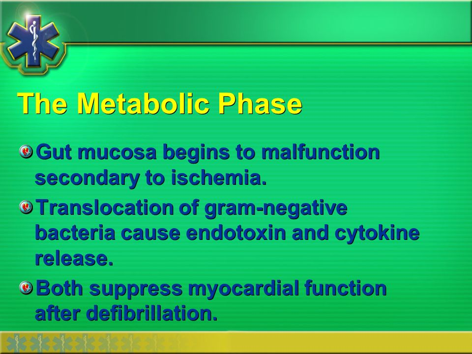 The Metabolic Phase Gut mucosa begins to malfunction secondary to ischemia.