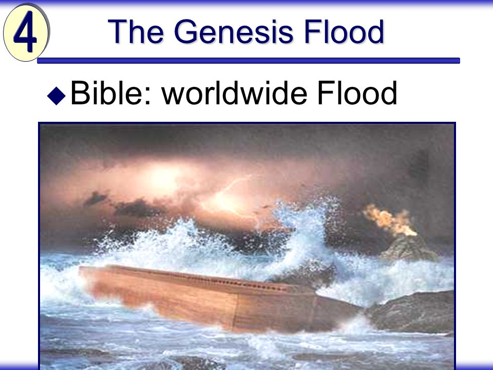Bible: worldwide Flood