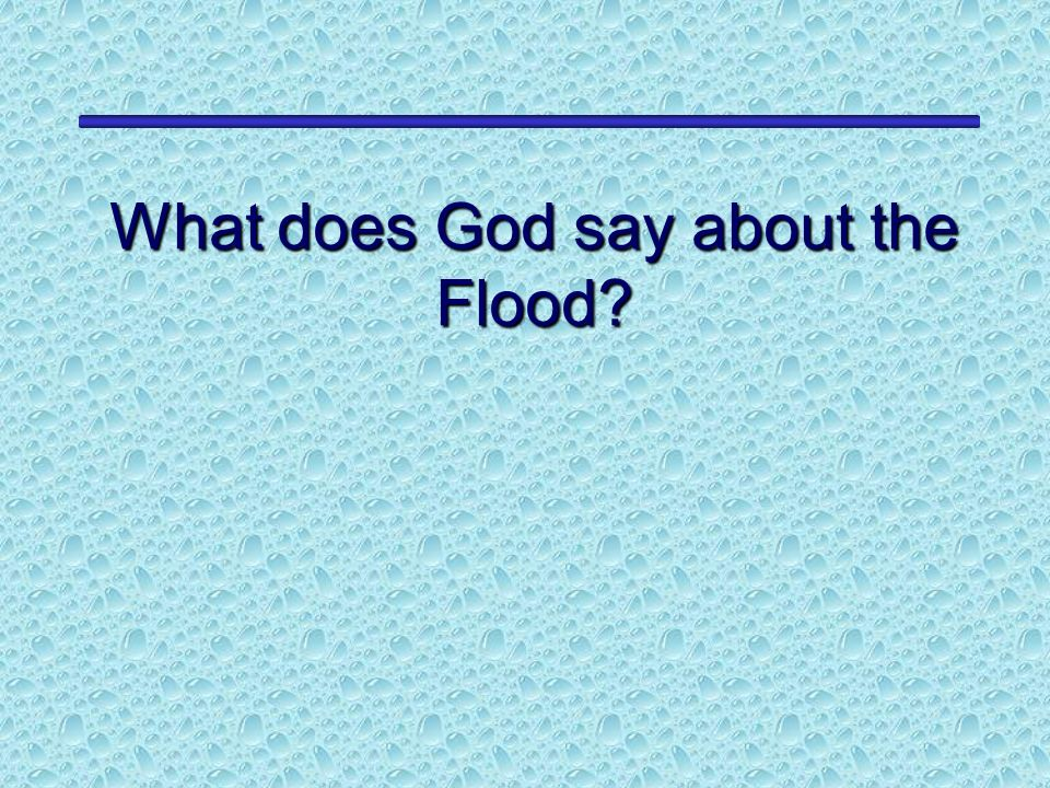What does God say about the Flood